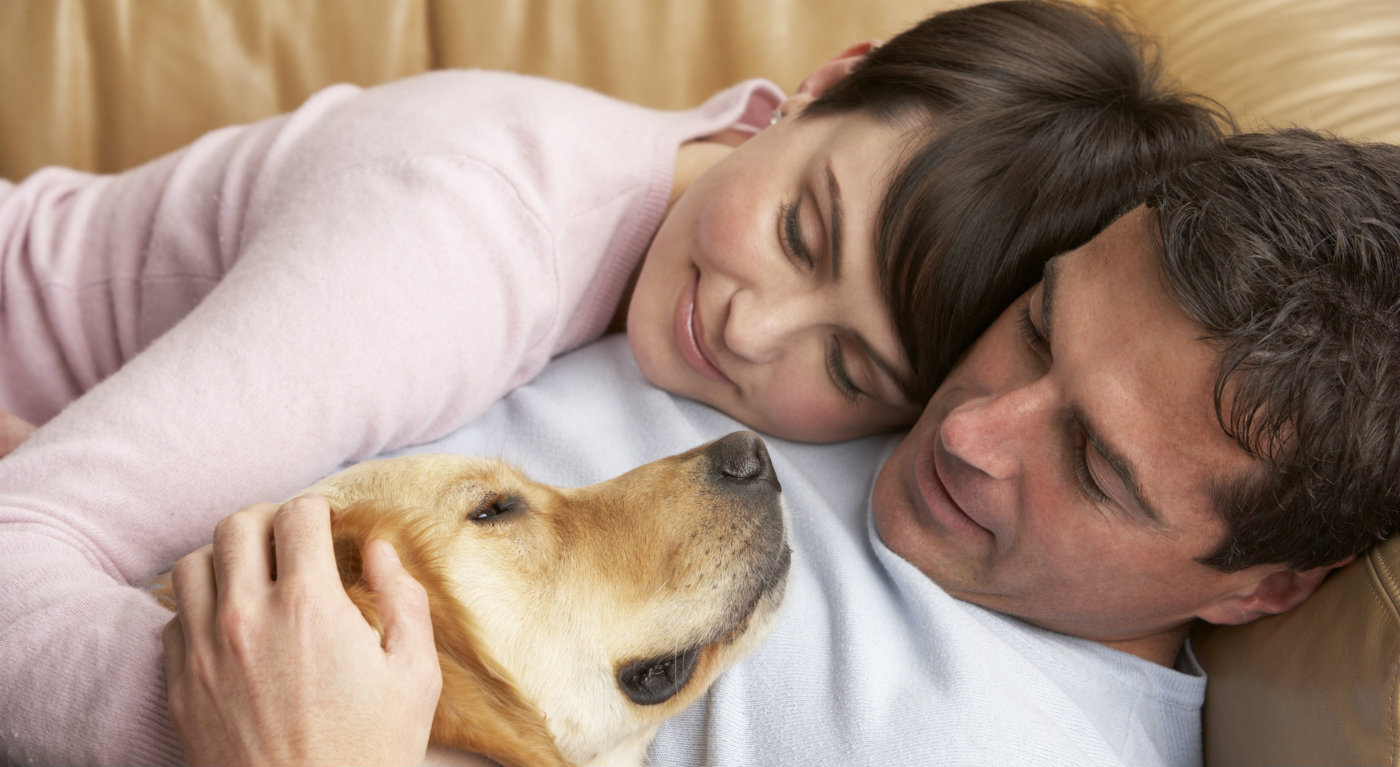 couple and dog cuddling in a winter home