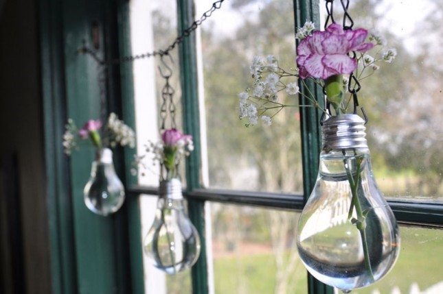 indoor plants lightbulb vases hanging next to a window on a chain with white and pink flowers