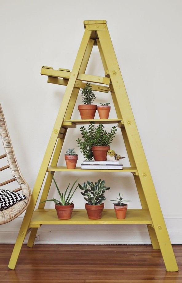 yellow upcycled ladder holding potted indoor plants on a wooden floor against a white wall