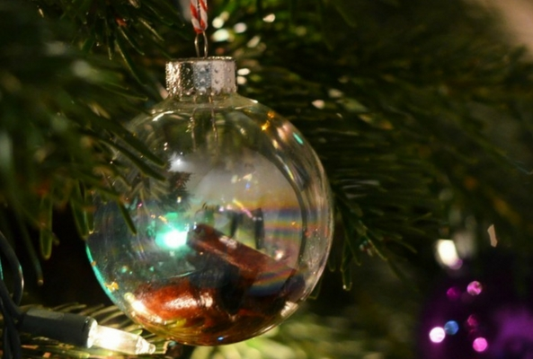 a handmade glass bauble on a pine tree full of cinammon and oil for a smell like christmas