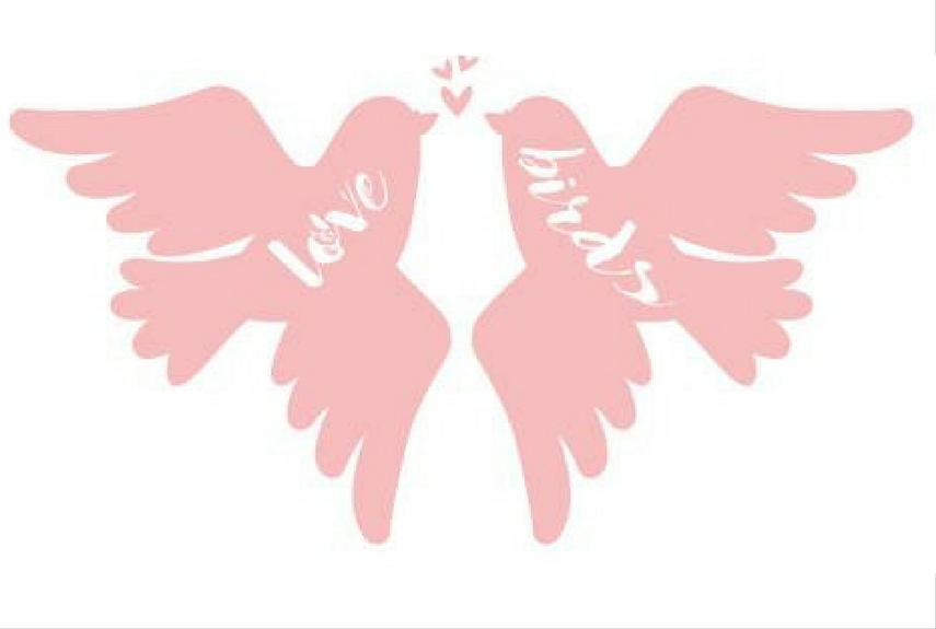 Valentine's day home decor Love Birds