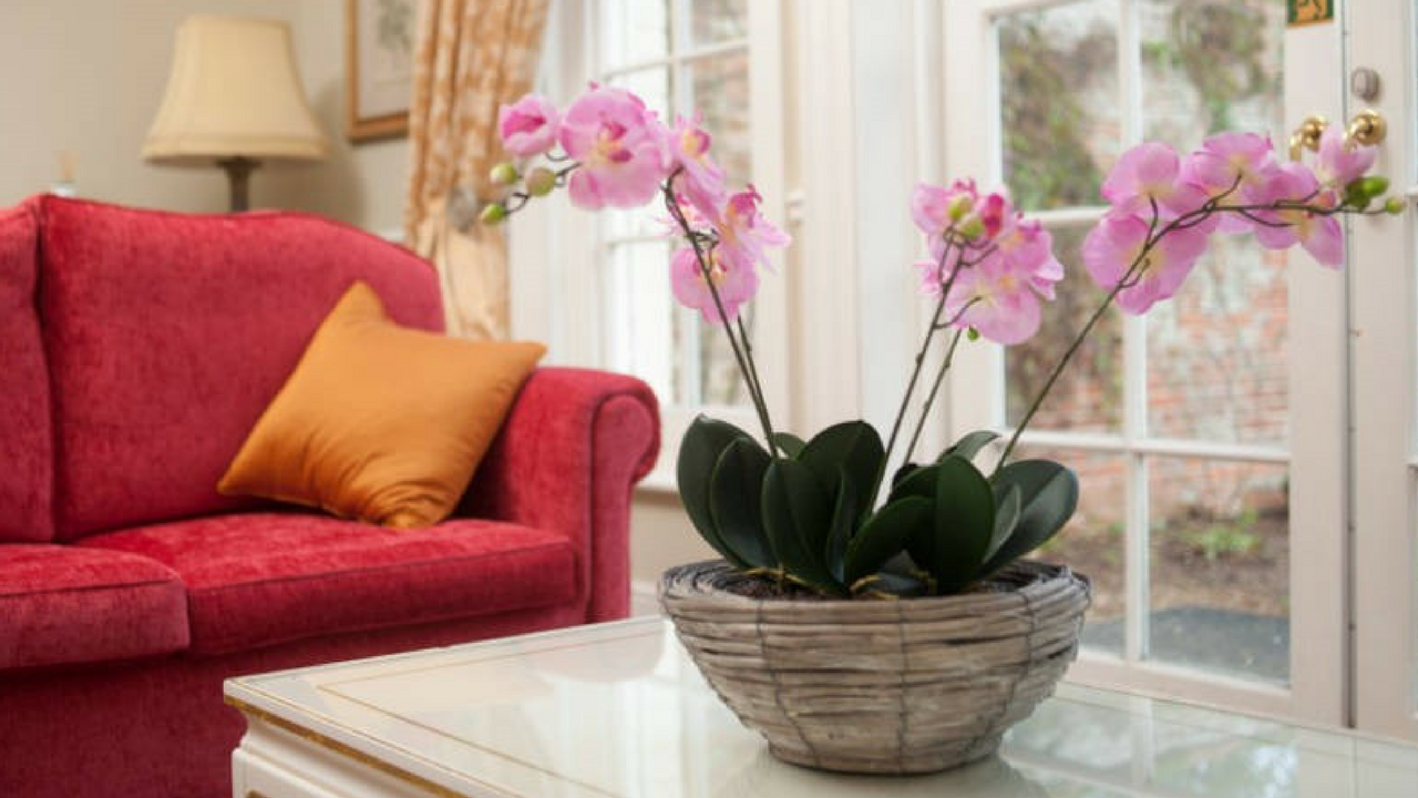 spring decorating ideas Embrace Florals