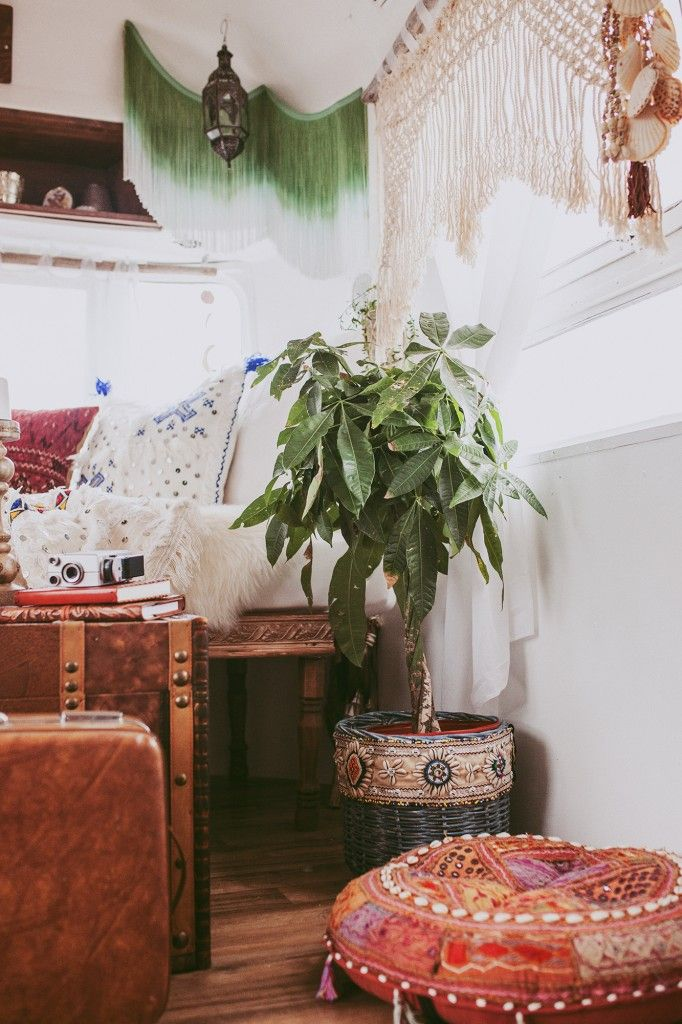 bohemian living room with a large plant and bohemian furniture accents