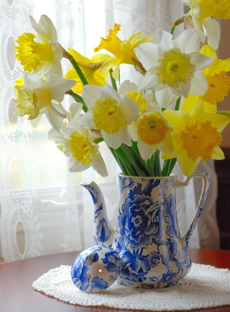 daffodils in a jug indoors