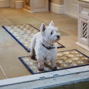 pet-friendly rugs for pets