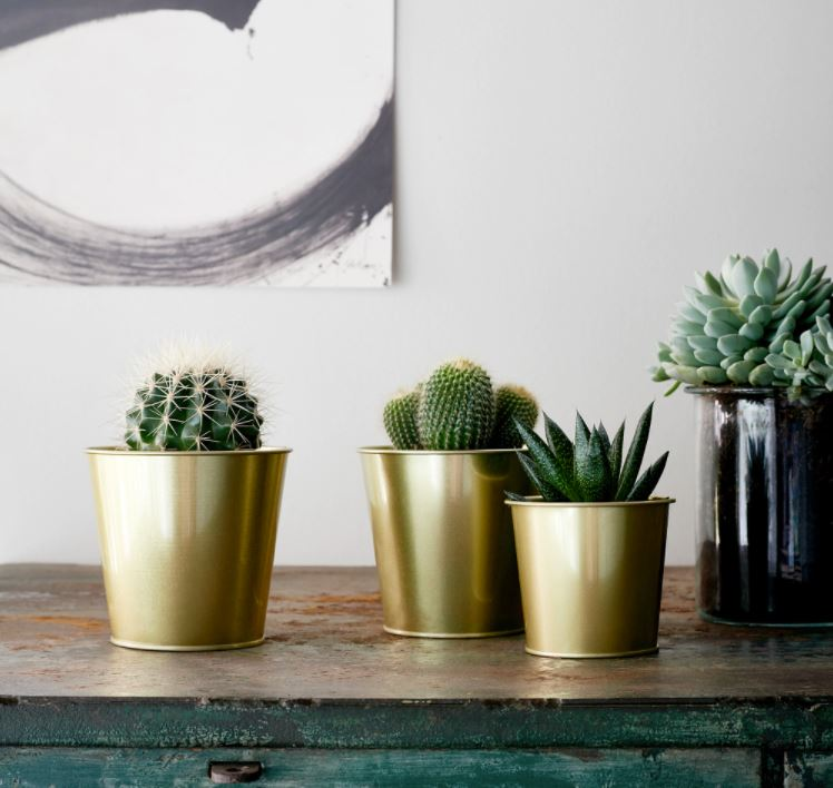 DAIDAI Plant pot, brass-colour