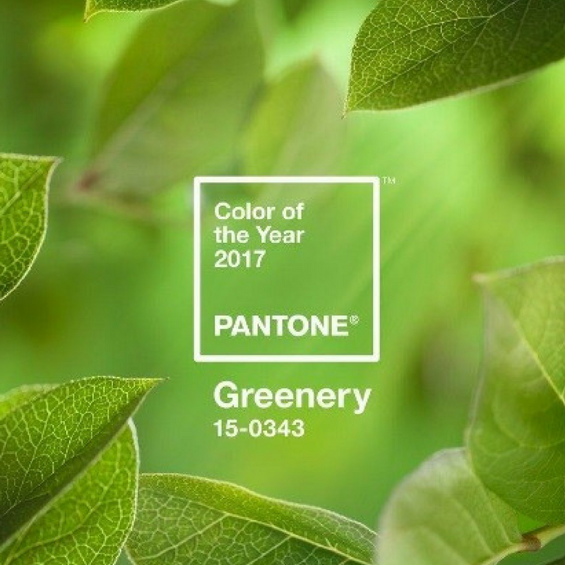 Ultra Violet Pantone Colour of the Year Greenery 2017
