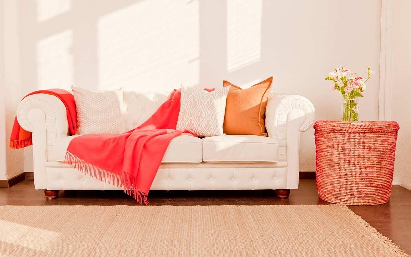orange/pink interior