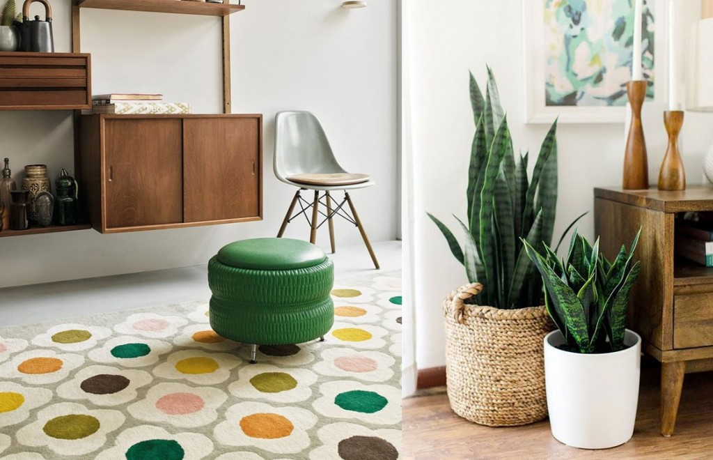 Bold Bohemian themed home with Orla Kiely Spot rug and house plants in woven baskets