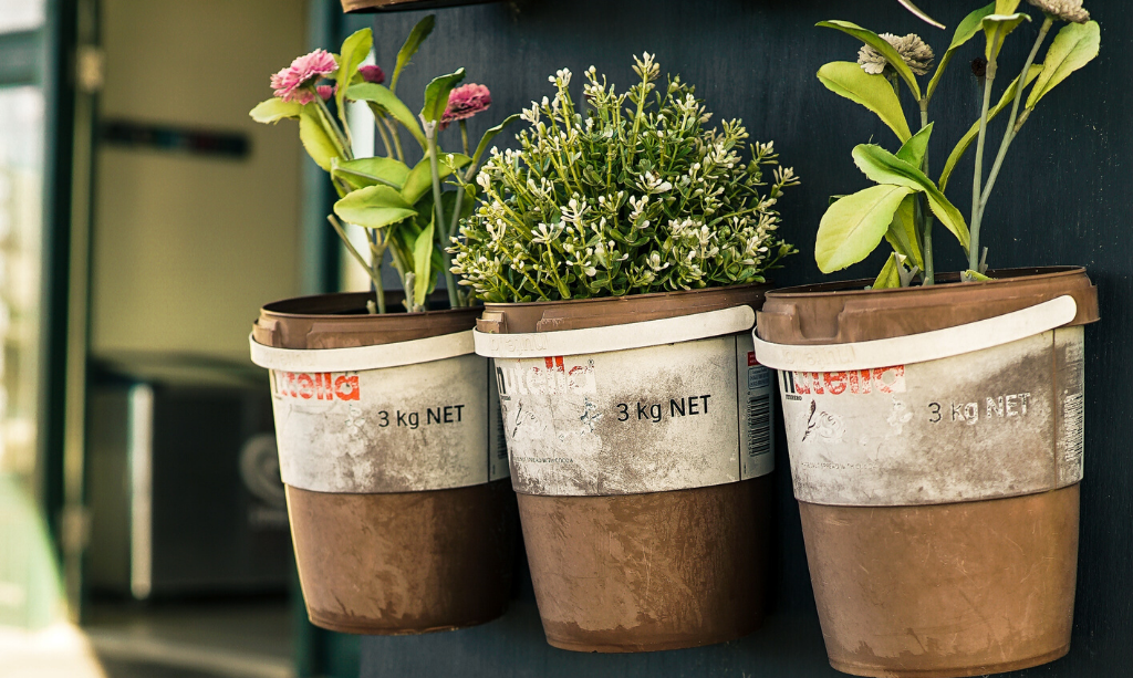 Eco-Friendly Home - Herb pots on a Wall