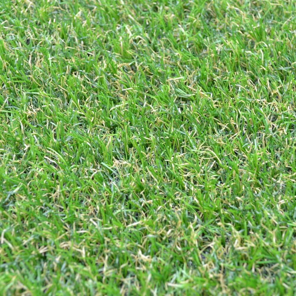 the camellia green artificial grass close up image
