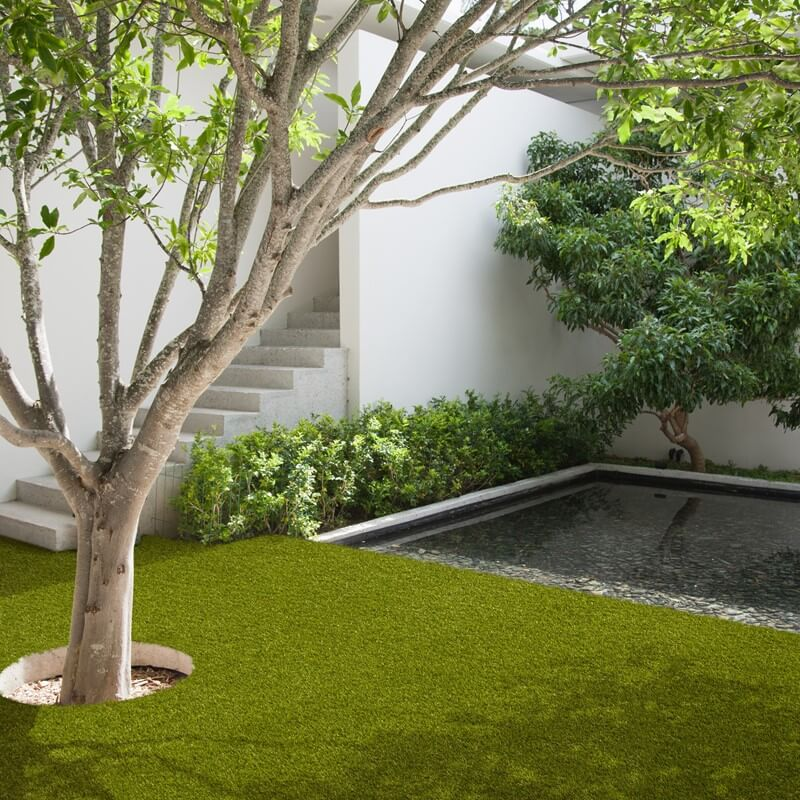 the valeria green artificial grass image in a garden with a tree, stairs and water feature
