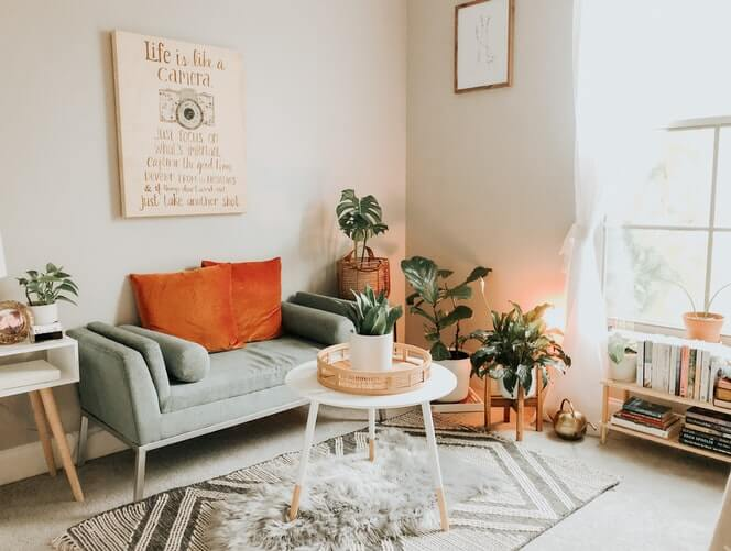 a simple interior with plants sat on rugs in a living room space